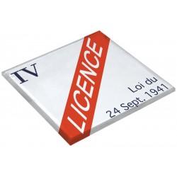 Dessous de plat - Licence IV